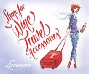Lazenne Travel Accessories