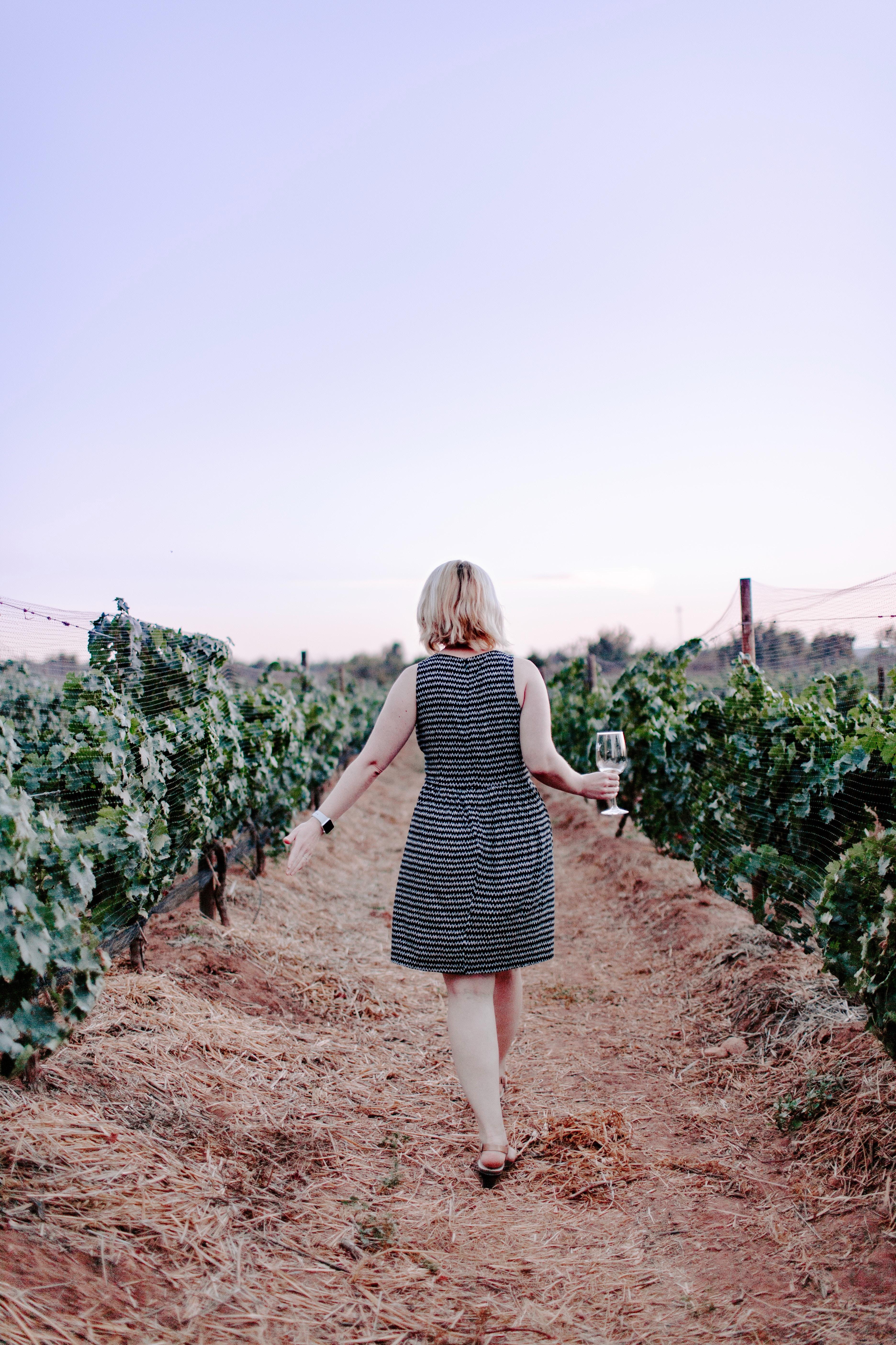 rotas do vinho italiano